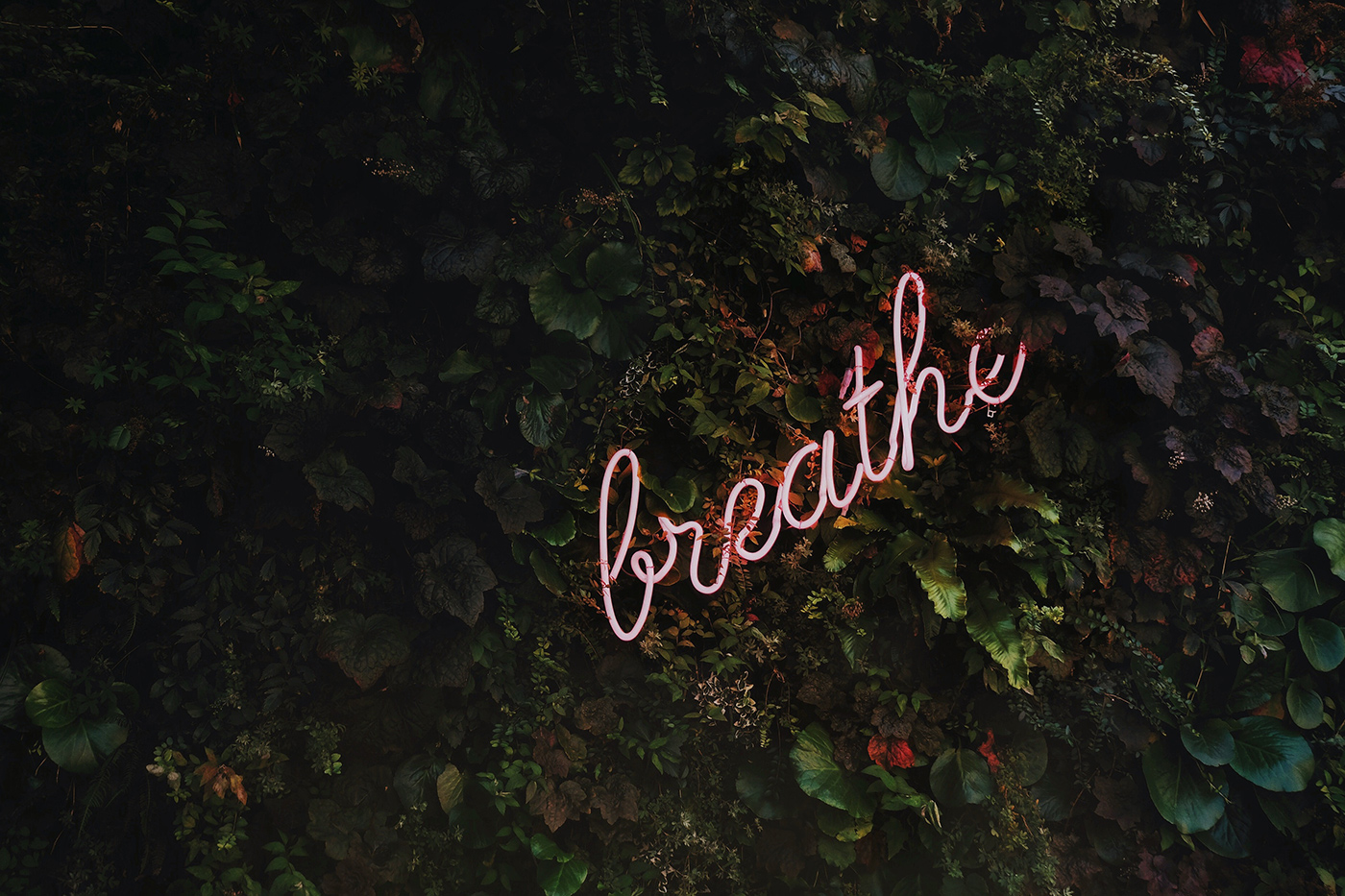 Entspann dich, das Leben ist nicht immer eine Karriereleiter